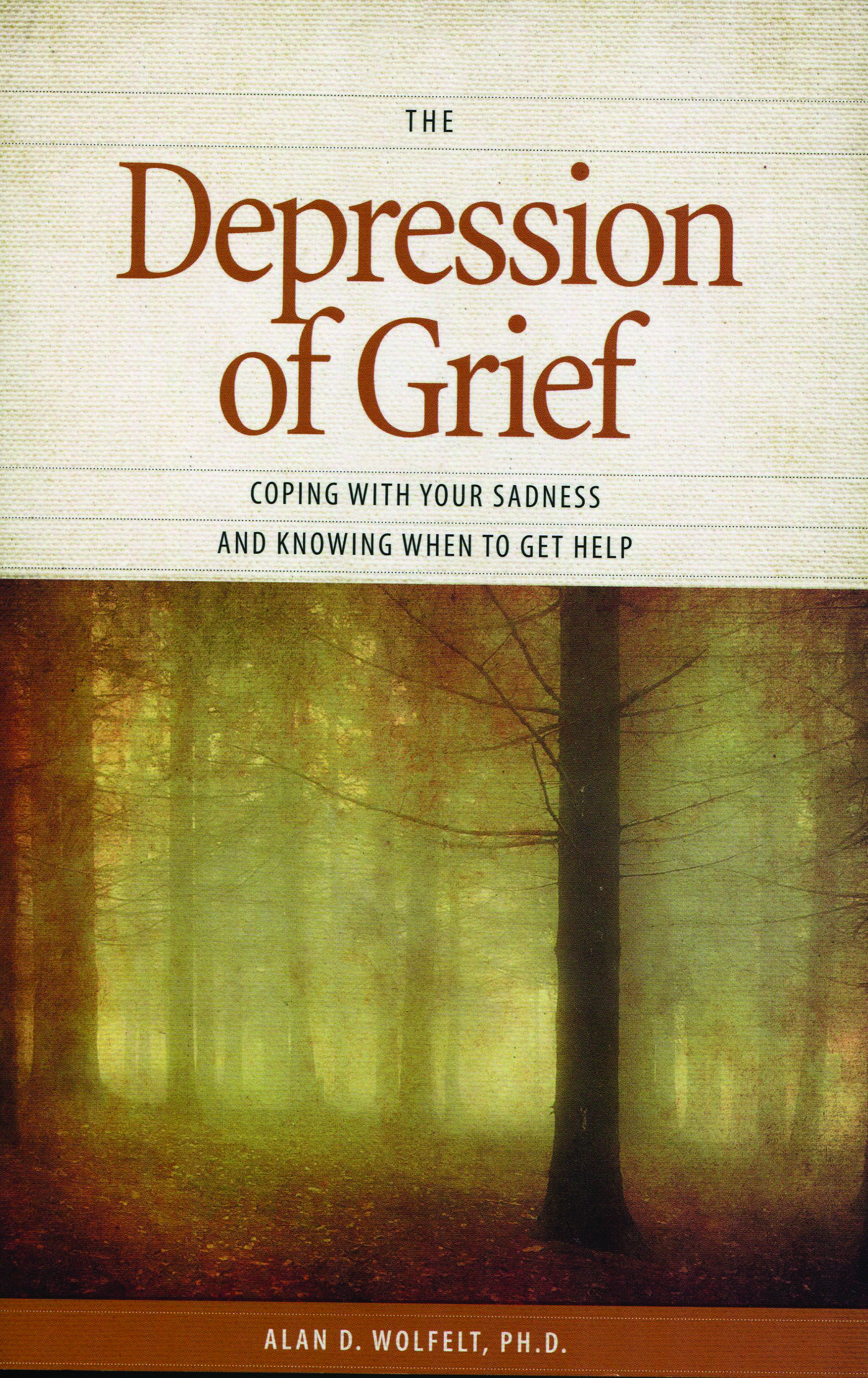 when children grieve for adults to help children deal with death divorce pet loss moving and other losses