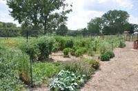 (C3) Platte County Community Garden