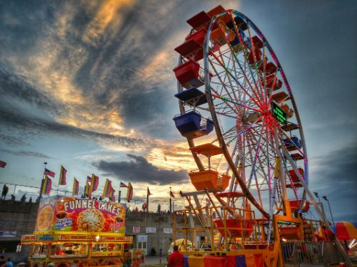 Why You Should Visit Your Local State or County Fair