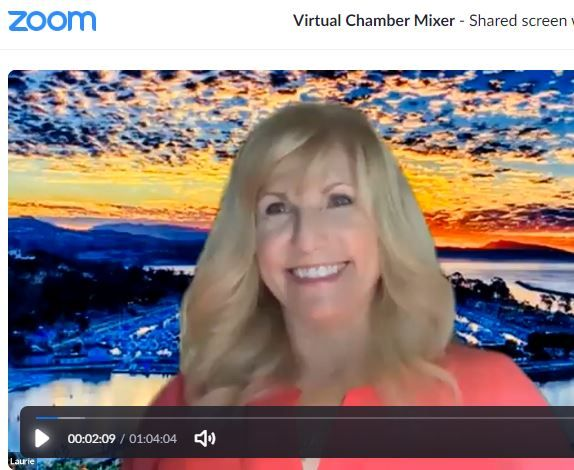 Chamber VIRTUAL Mixer - With Special guests Laguna Niguel City Council and City Manager