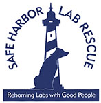 Safe Harbor Lab Rescue