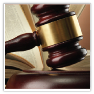 Attorneys and Legal Professionals