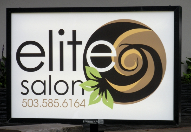 Elite Salon Illuminated Sign