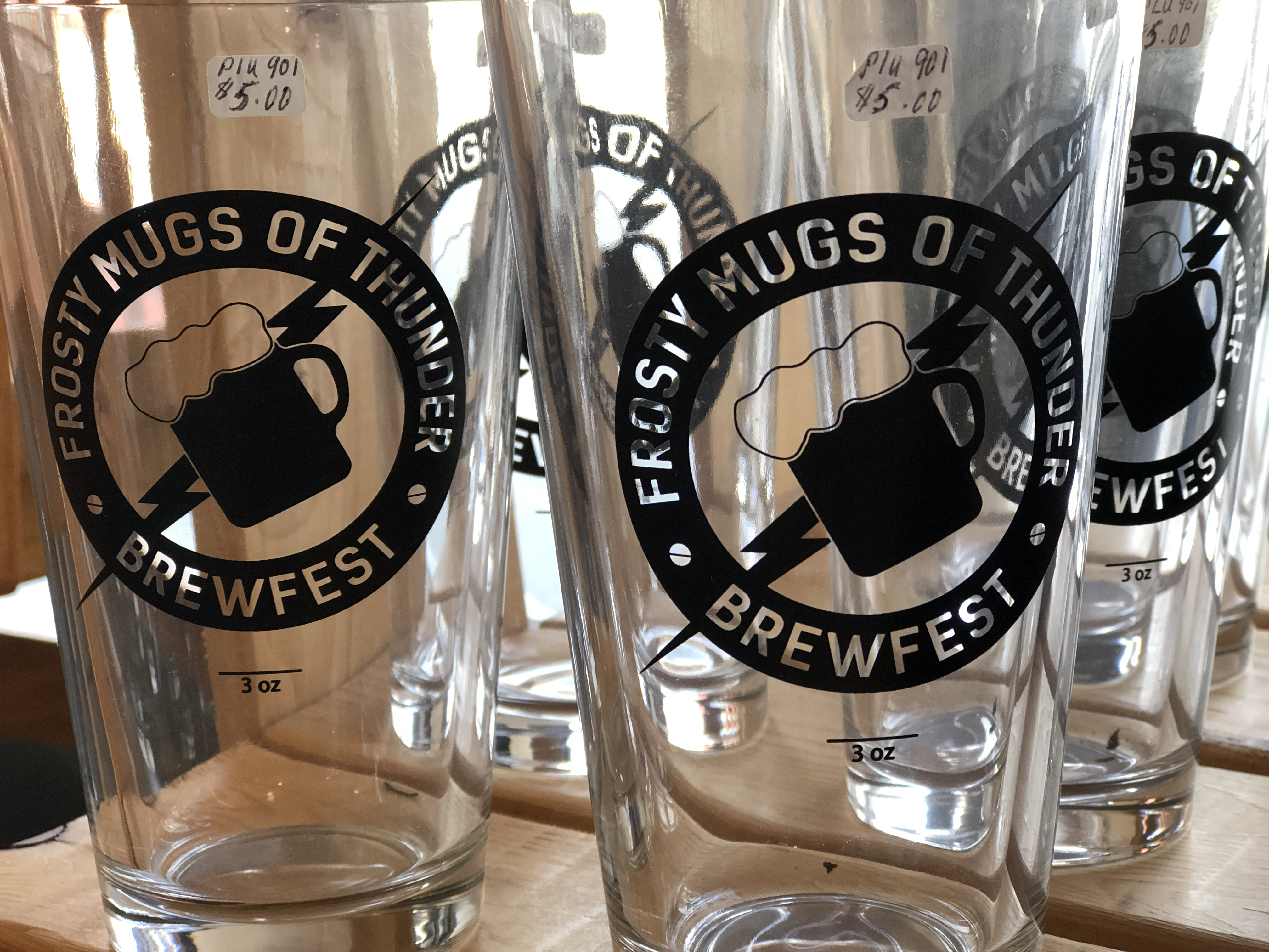 2019 Frosty Mugs of Thunder Brewfest