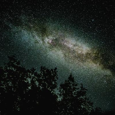 Stargazing: Perseid Shower Viewing