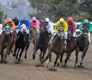 Thoroughbred Racing
