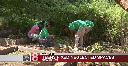 Green Jobs Interns Revive Community Garden