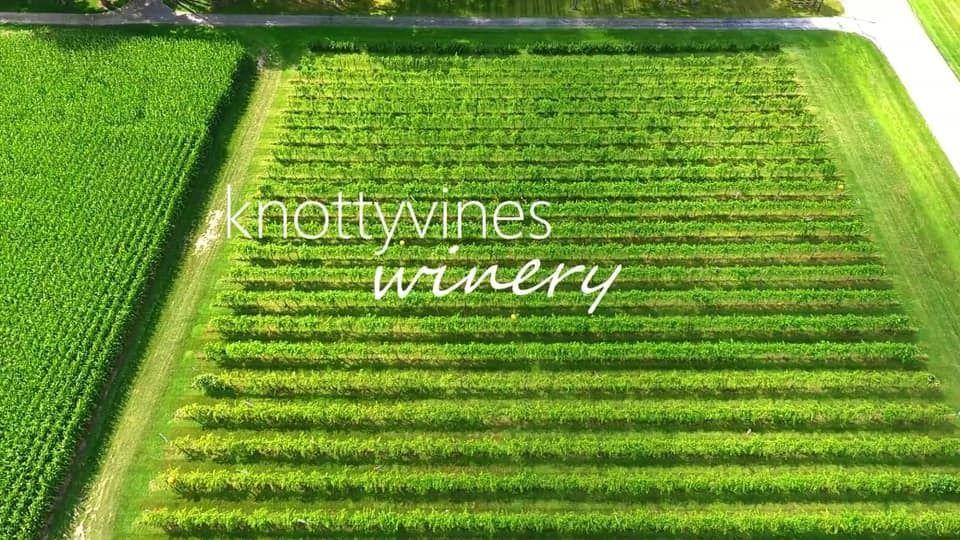 Knotty Vines Winery