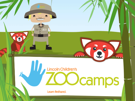 A cartoon enjoying a safari.  Give kids a summer adventure by joining a summer camp today!
