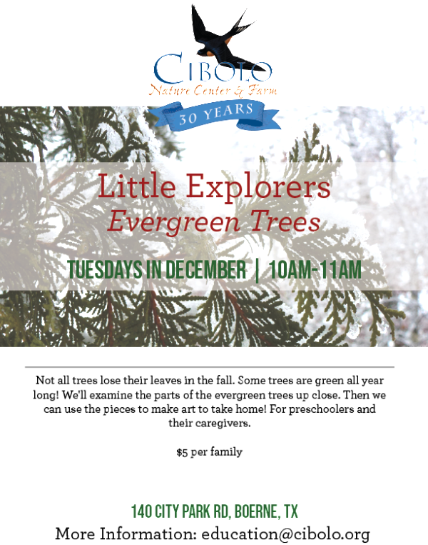 CNC: Little Explorers - Evergreen Trees!