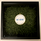 Shadow Box with turf - Grand Island Central Catholic