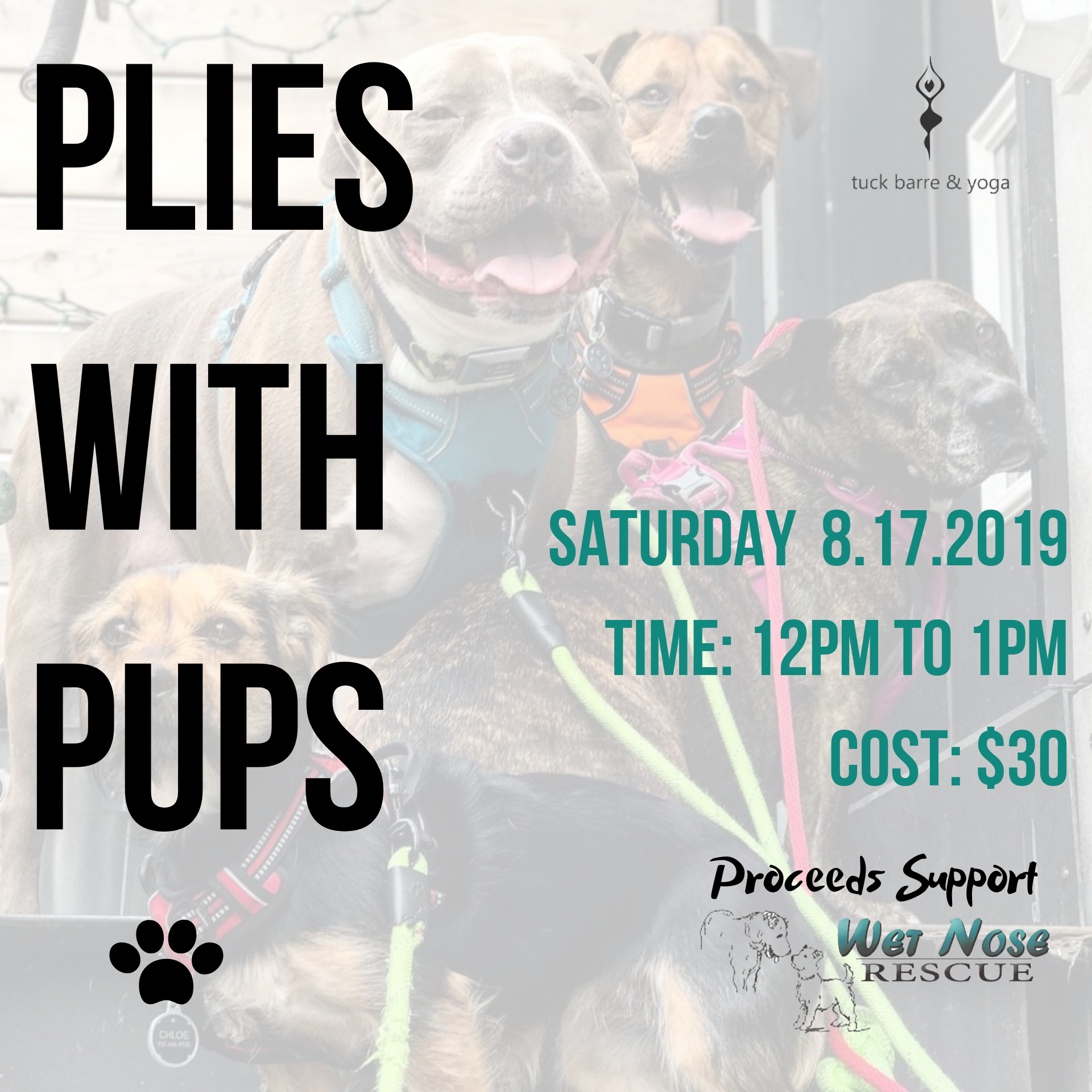 Plies with Pups @ Tuck, Barre and Yoga