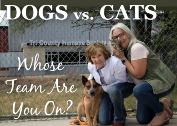 Dogs vs. Cats... Whose Team Are You On?