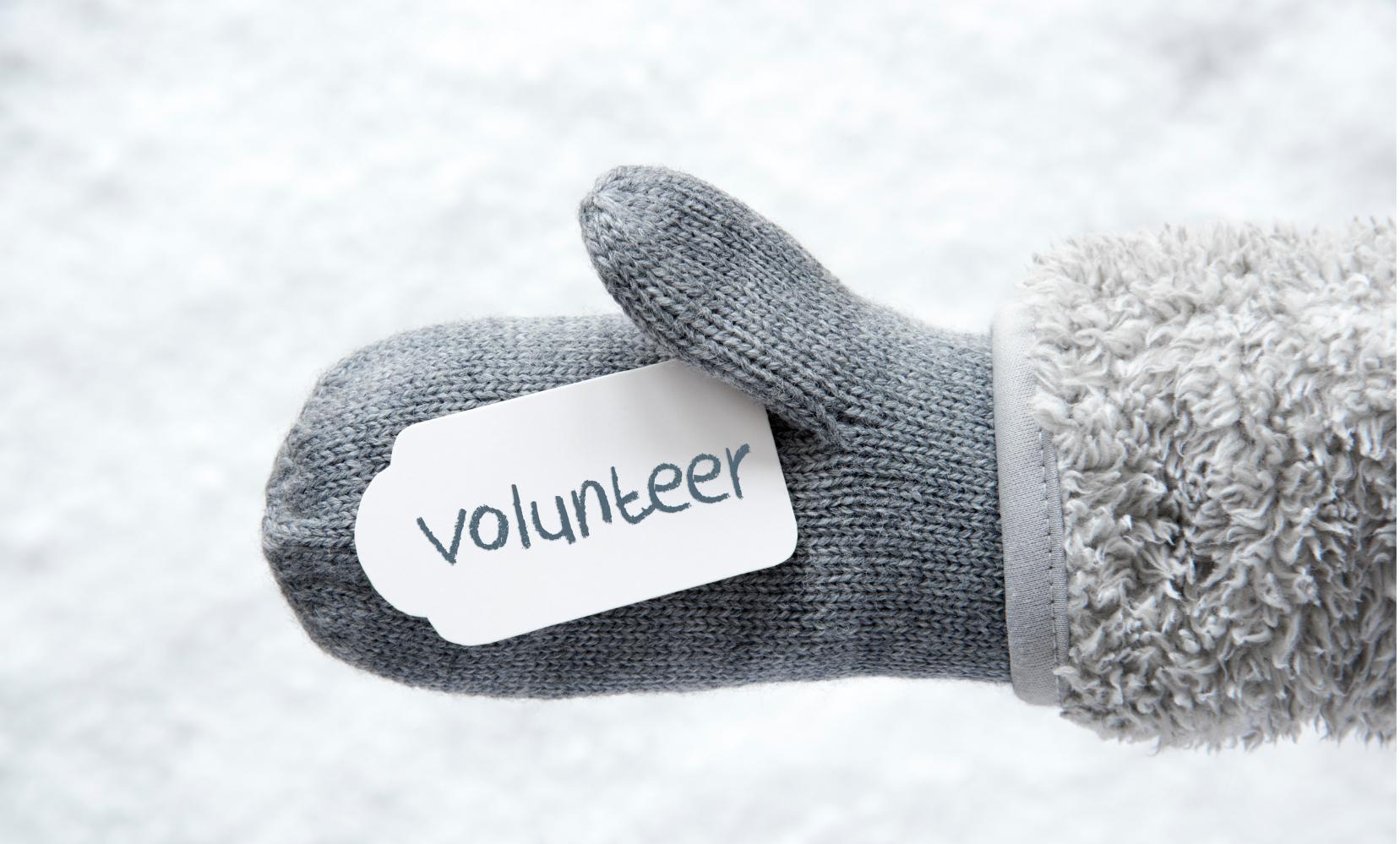 Holiday Volunteering