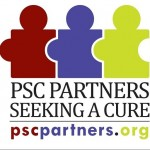 RESEARCH UPDATE:  ANNOUNCING THE 2017 PSC PARTNERS 2017 GRANT AWARDEES