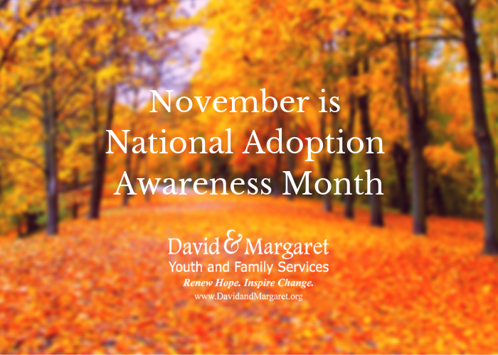 November is National Adoption Awareness Month