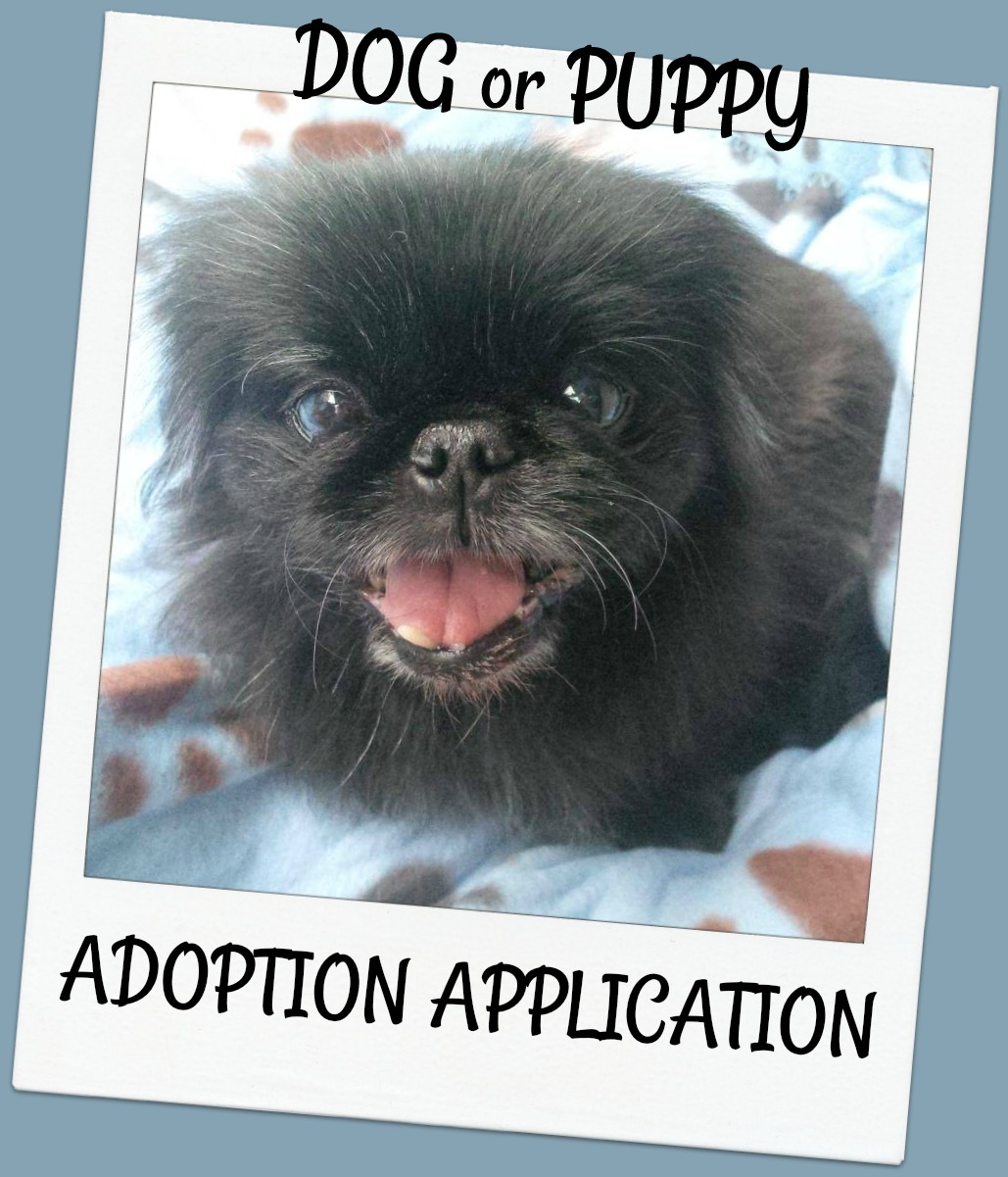 Click here to fill out a DOG ADOPTION FORM