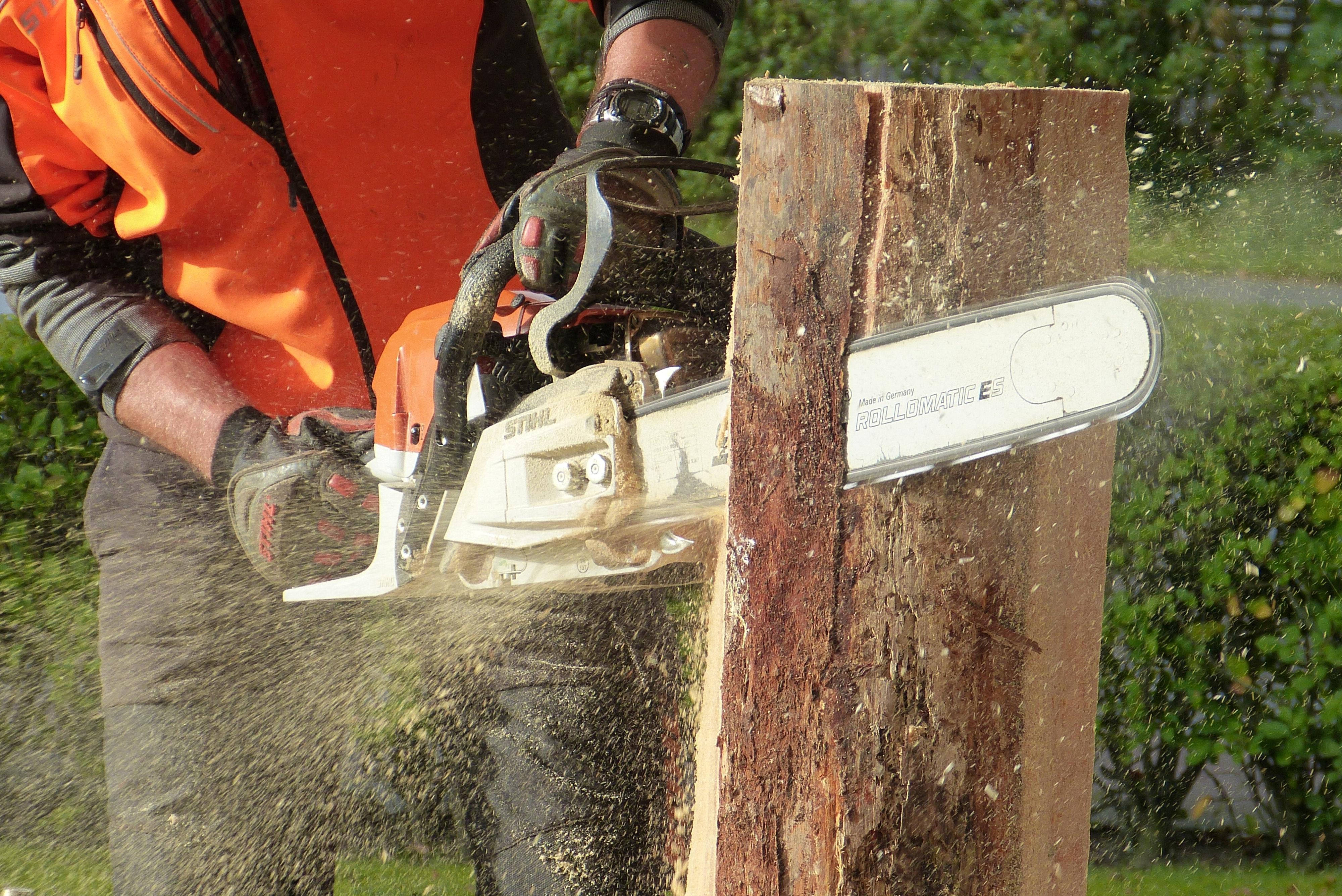Basic Chainsaw Operation, Safety & Maintenance