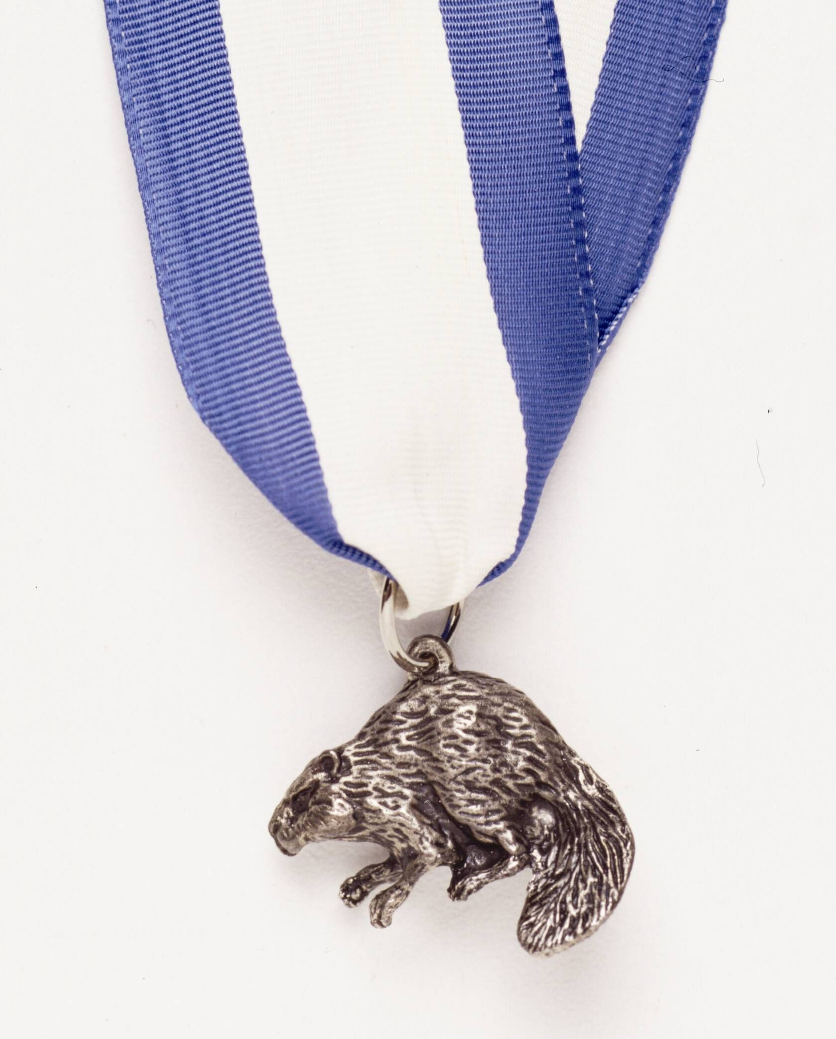 Submit Your Silver Beaver Nominations