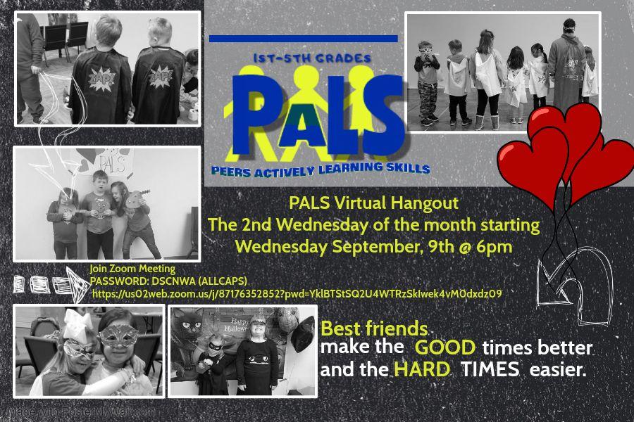 DSCNWA PALS Monthly Virtual Hangout