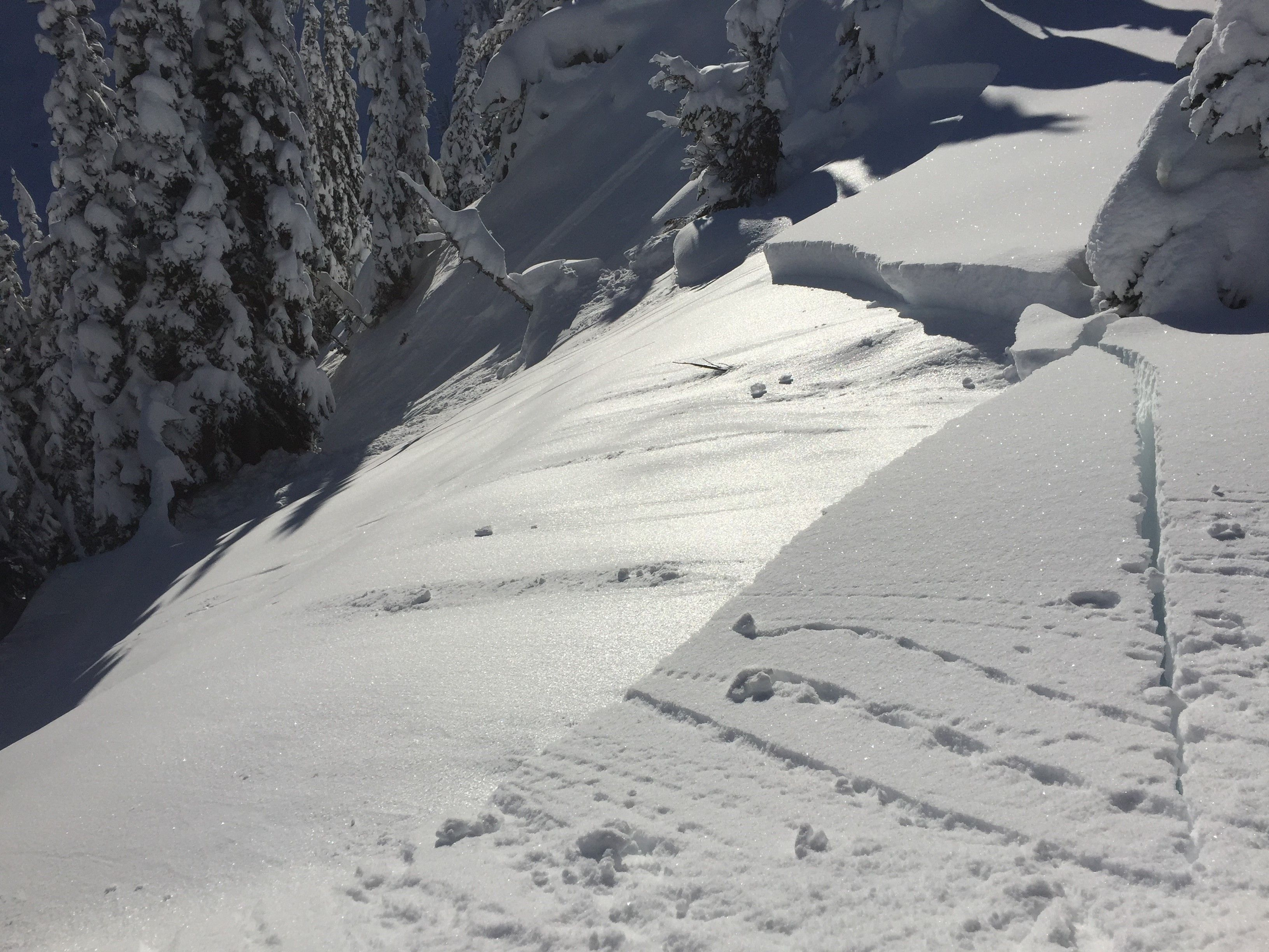 Science on Tap! Avalanche Cycles and Atmospheric Rivers - The winter of 2019-20 in the Central Cascades