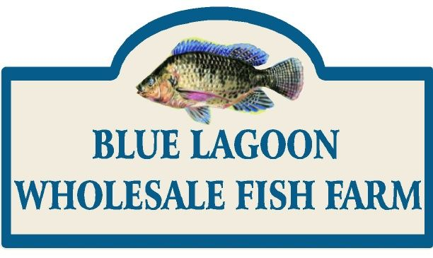 Q25136 - Design of Carved Wood or HDU Sign for Wholesale Fish Farm with Carved Painted Fish