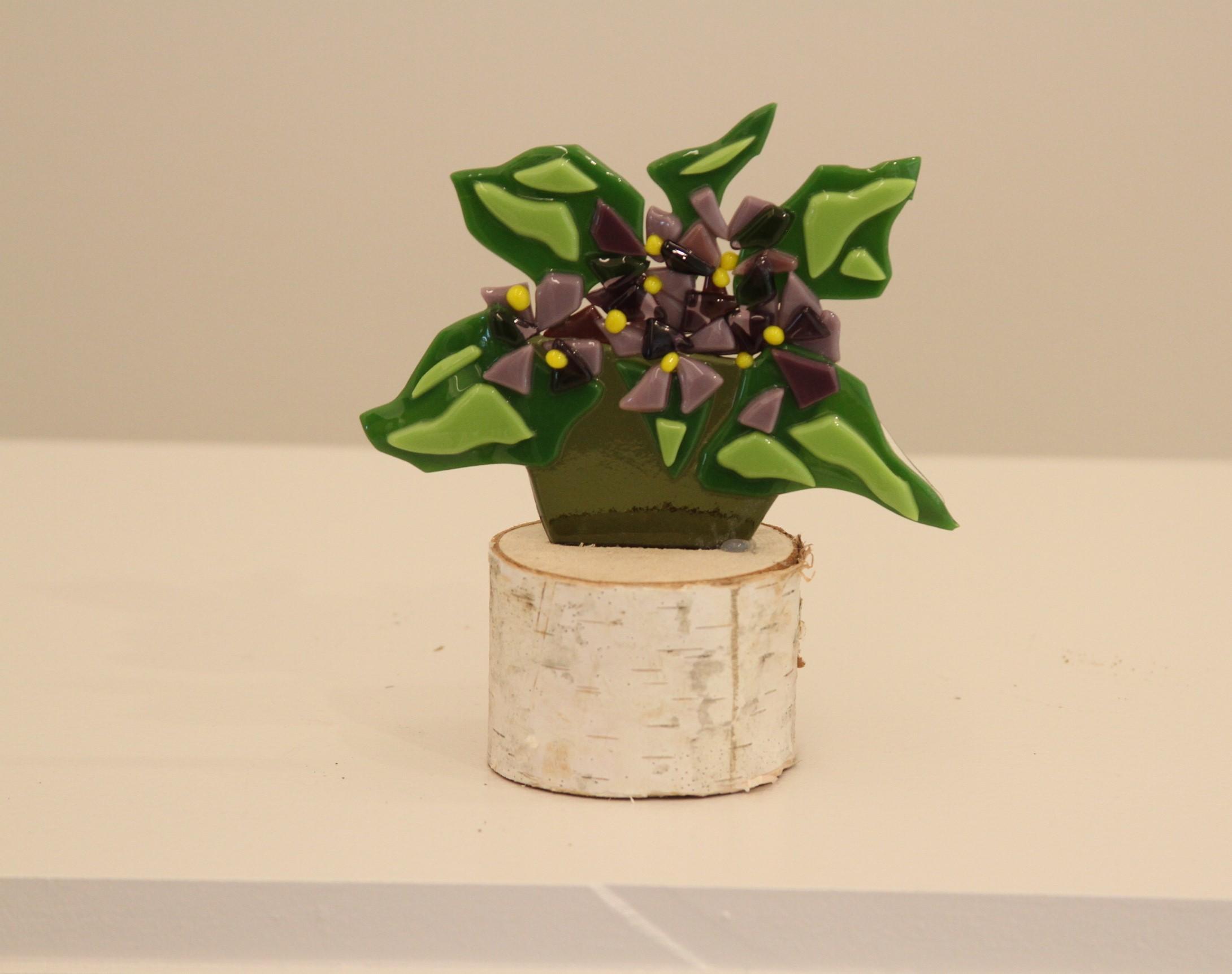 Violets on Stump