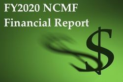 FY20 Financial Report