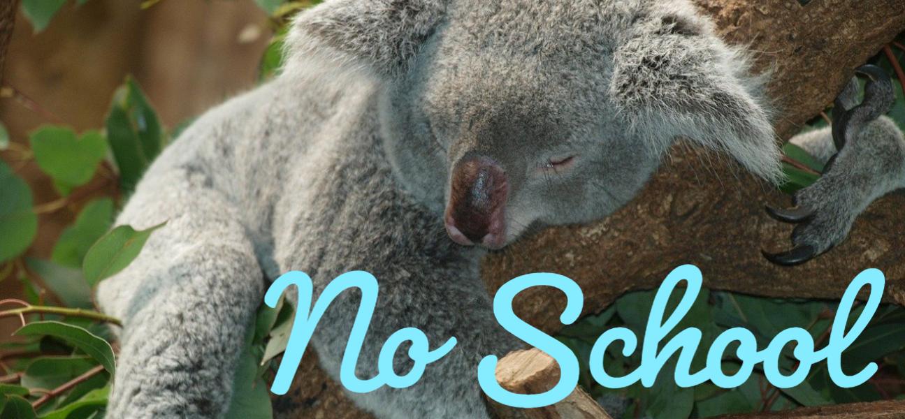 Spring Holiday - No School