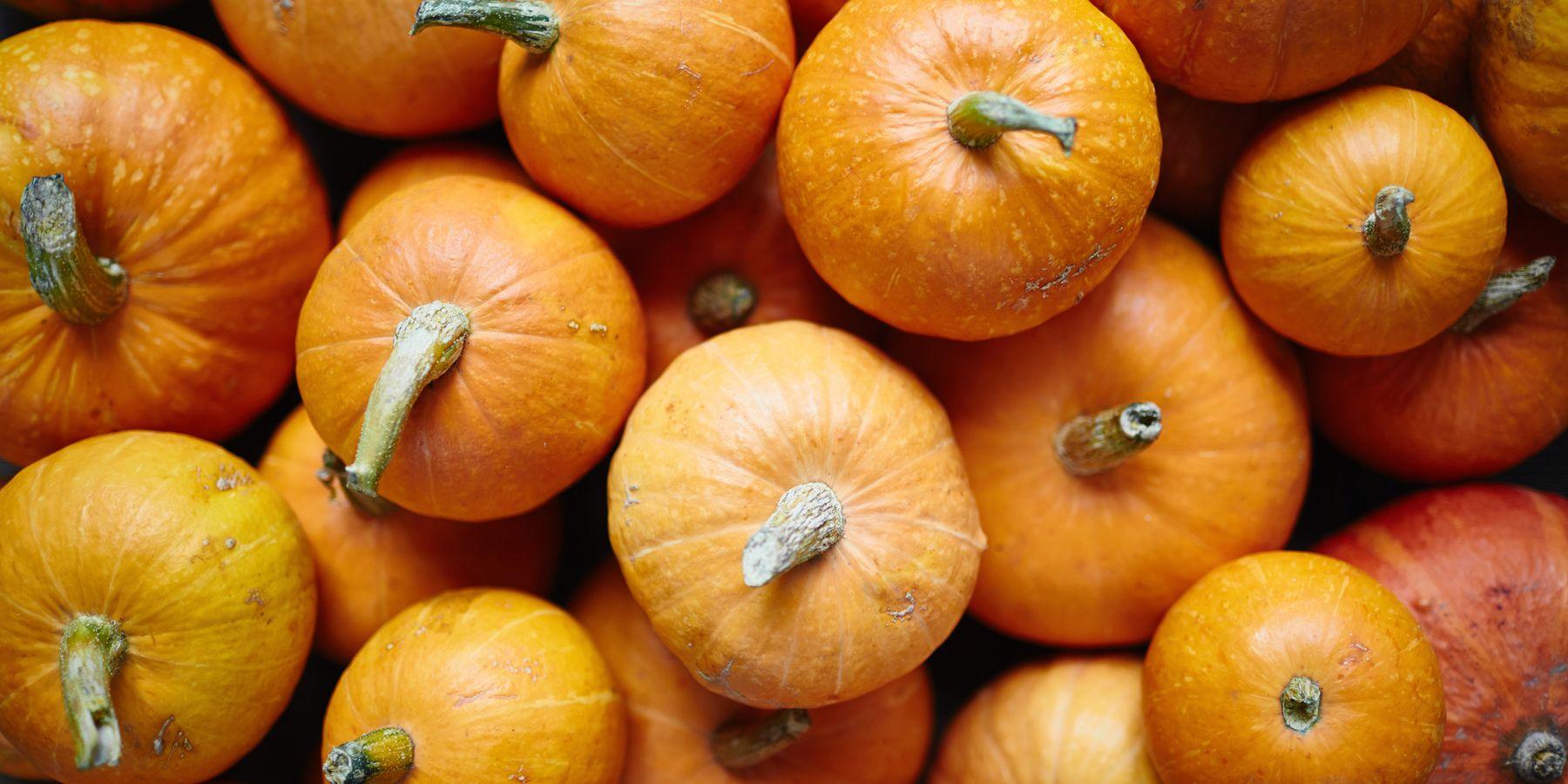 CREATE a Pumpkin 2021