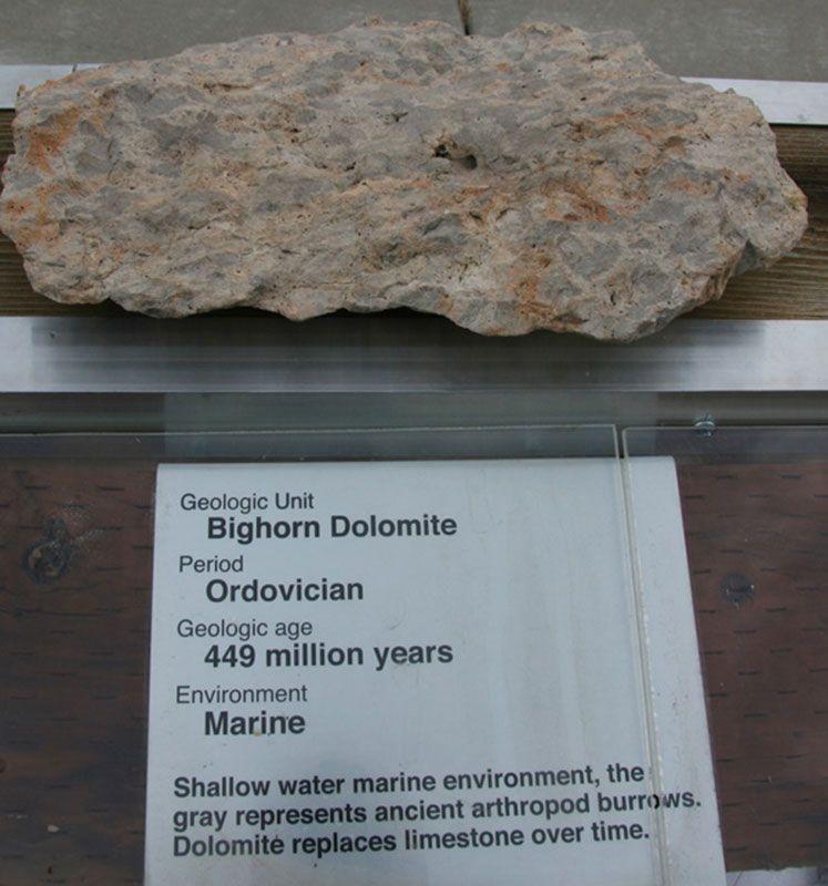 Bighorn Dolomite - Ordovician