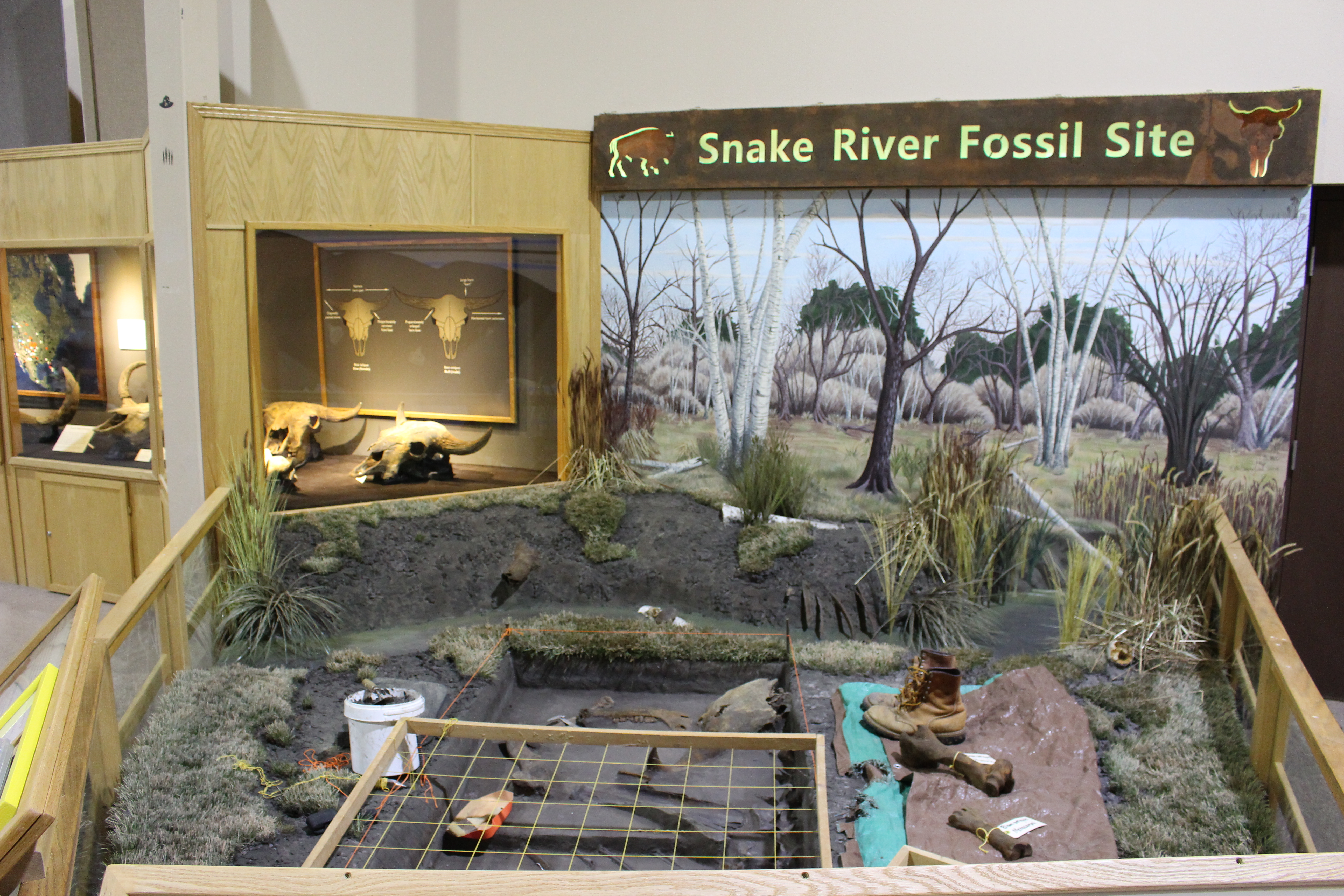 The Mammoth Site to Excavate at the Snake River Fossil Site