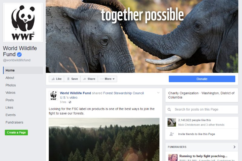 12 Nonprofit Examples that Rock at Facebook