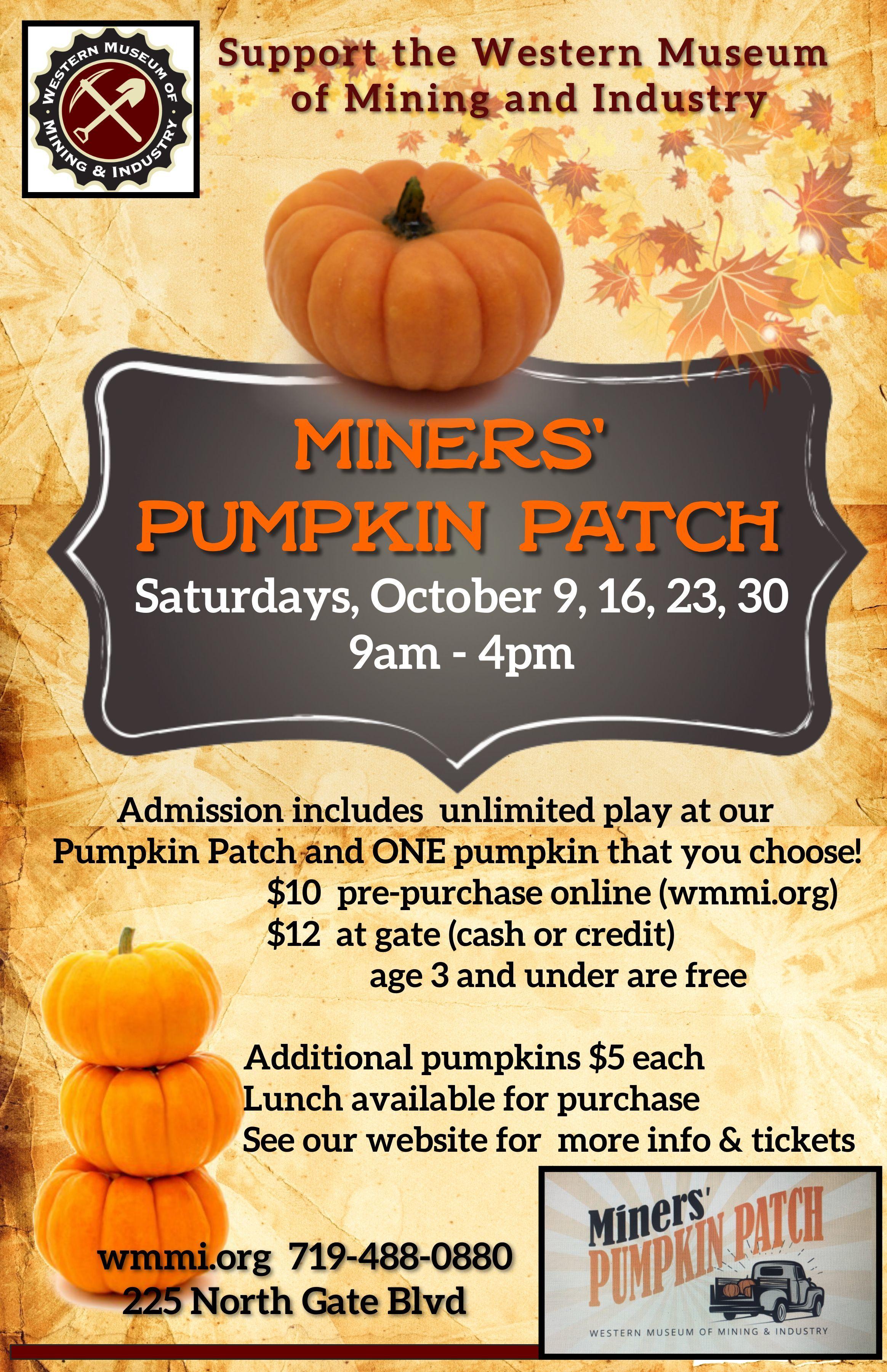 Miners' Pumpkin Patch