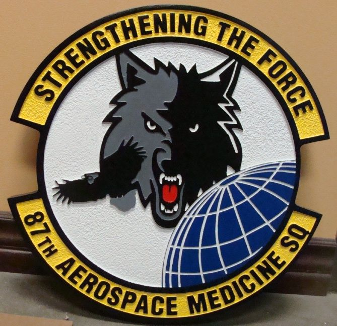 V31566 - Wall Plaque of the Crest for the 87th Aerospace Medicine Squad, US  Air Force