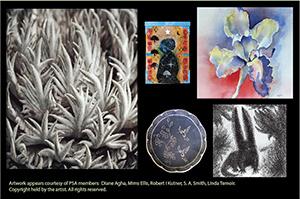 """2014 - """"Flora and Fauna"""" - Pasadena Library - May 1-31"""