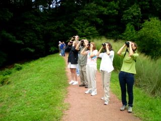 Members Only Guided Bird Watch