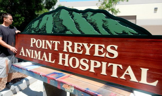 BB11723 - Carved Wood Animal Hospital Monument Sign with Carved Image of Mountain