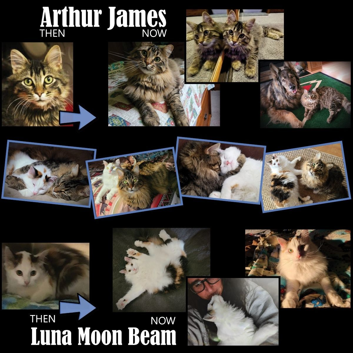 Arthur James and Luna Moon Beam