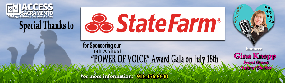 Power of Voice Thanks State Farm