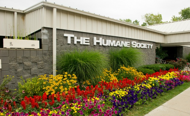 Supporting animals in Genesee County since 1926
