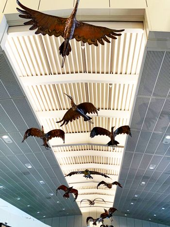 Airport Art Display