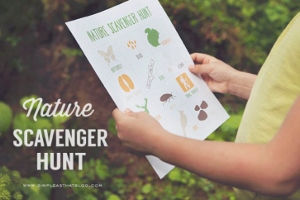 Scavenger Hunts: Nature Scavenger Hunt