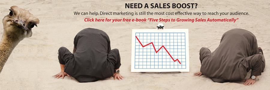 5 Steps Website