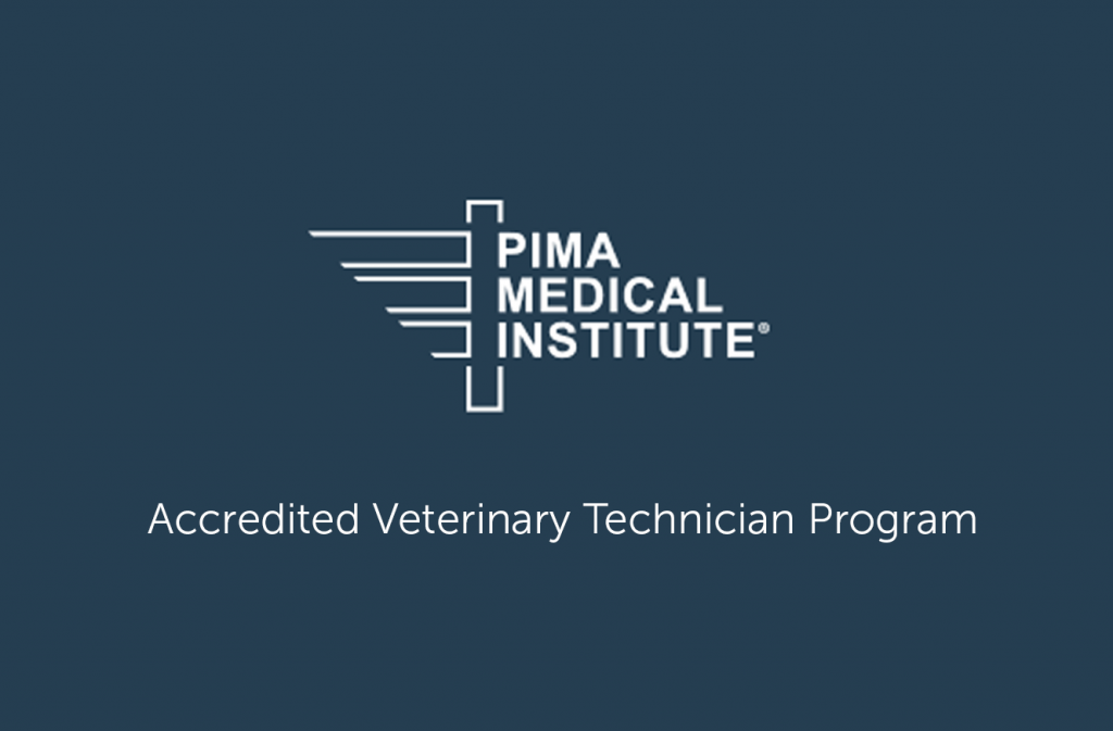 The Only Vet Tech Program in Montana