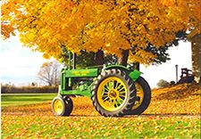 Fall Harvest Festival and Tractor Show