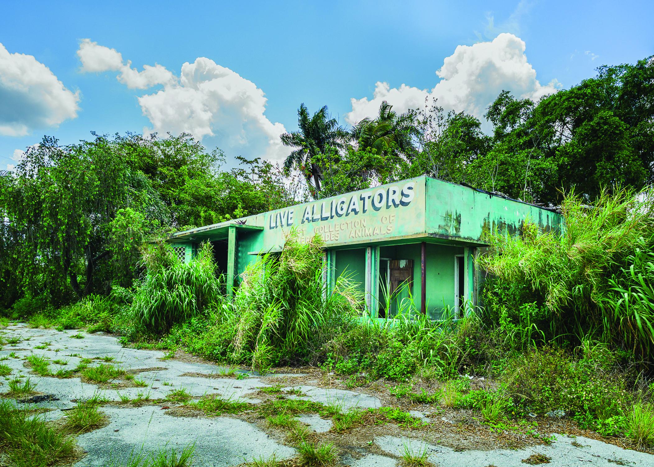 26th Annual All Florida Juried Arts SHow