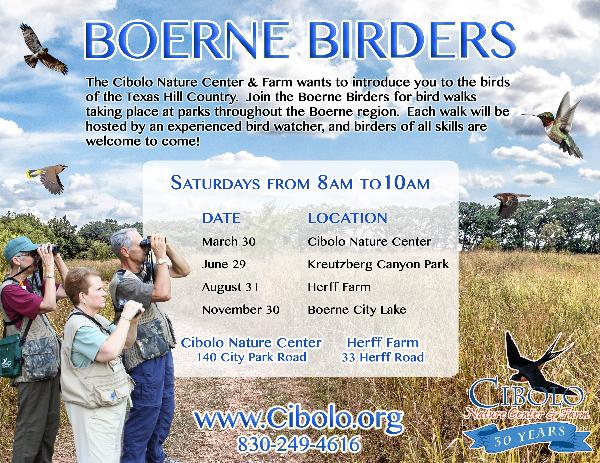 Boerne Birders