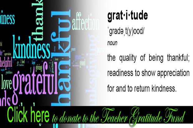 TEACHER GRATITUDE GIFT