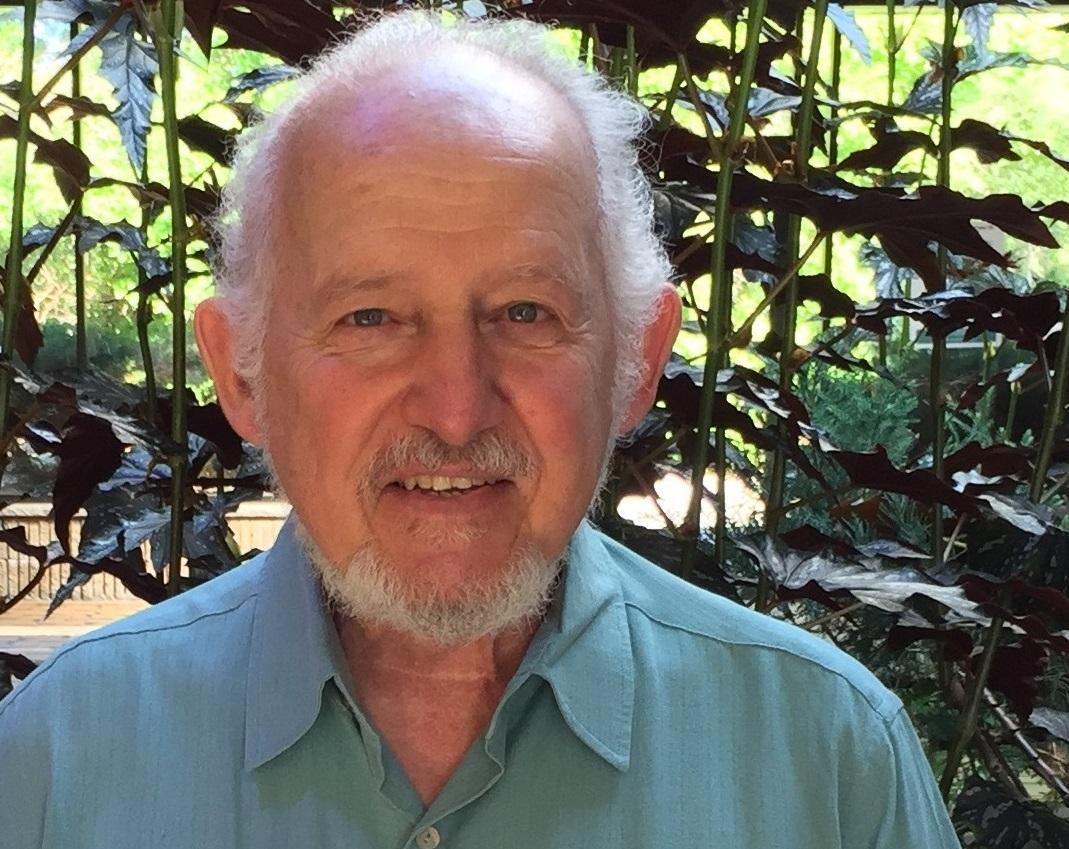 David Del Campo